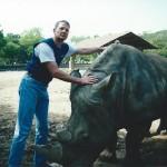 White Rhino in Korea